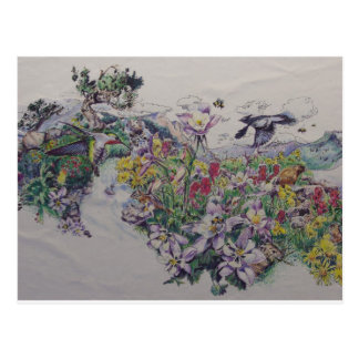 Floral Songbirds Postcard
