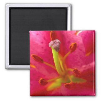 Floral Stamen Magnet