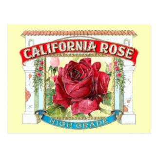 Floral subió California del vintage Tarjeta Postal