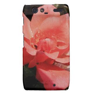 Floral subió rosa bonito del melocotón droid RAZR funda