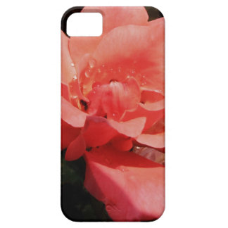 Floral subió rosa bonito del melocotón iPhone 5 cárcasa