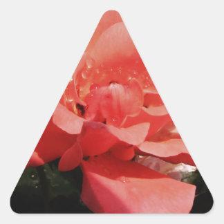 Floral subió rosa bonito del melocotón pegatina triangular