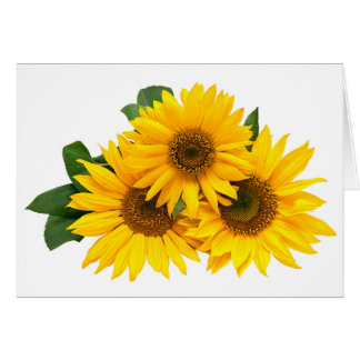 Floral Sunflower Yellow Flower Note Card