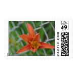Floral Sunshine Postage Stamps