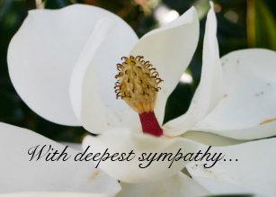 floral sympathy greeting cards bulk discount - Bulk Sympathy Cards