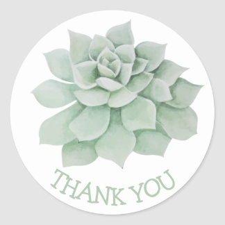 Floral Thank You Green Succulent Cactus Classic Round Sticker