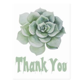Floral Thank You Mint Green Succulent Cactus Postcard