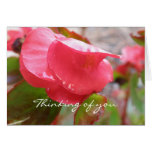 Floral Thinking of you Greeting Cards