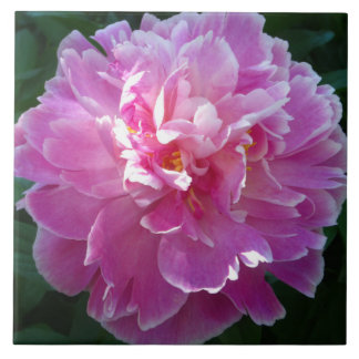 """""""Floral Tile Collection"""": Peony #1"""