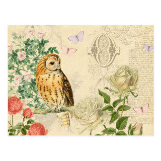 Floral vintage owl postcard with beautiful roses