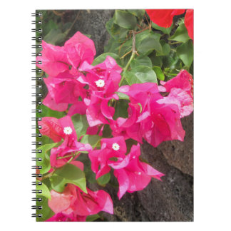 Floral Volcanic Lava Rock Notebook