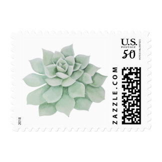 Floral Watercolor Mint Green Succulent Cactus Postage