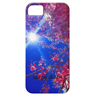 floral with carpe diem and sunbeams for iphone5 iPhone SE/5/5s case
