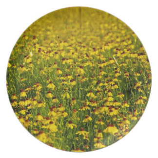 Floral yellow wildflowers photo dinner plate
