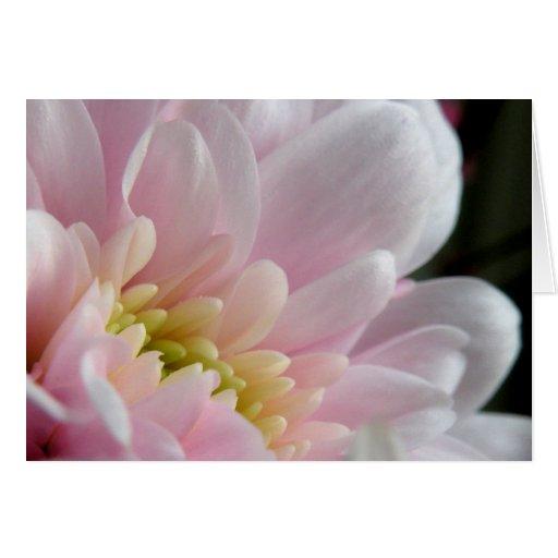 Florales rosados le agradecen tarjeta de nota