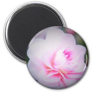 Florall Blush Magnet