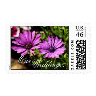 floralpurple1, Wedding..., Our Stamp