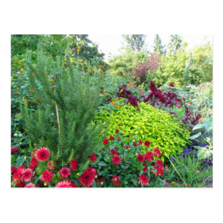 Florals in the English Garden s Postcard