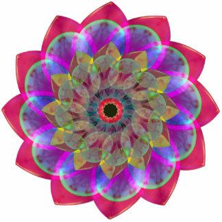 Floramoeba Rose Photo Cut Outs