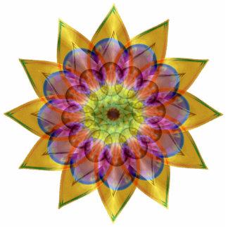 Floramoeba Star Mandala Photo Cutouts