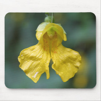 FLORAS FEAST IN YELLOW MOUSE PAD