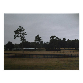 Flordia Rancher ~Print~ Poster