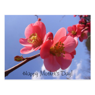 floreal postcard - Happy Mother's Day