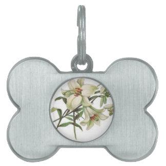 florece el lirio blanco de los flores de la placa de mascota