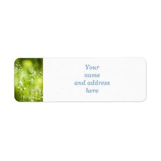 Florecimiento de la hierba verde de junio etiqueta de remite