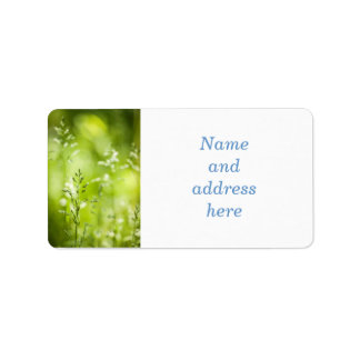 Florecimiento de la hierba verde de junio etiquetas de dirección