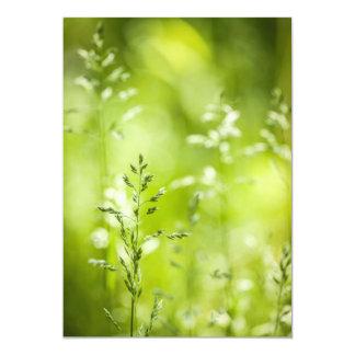 """Florecimiento de la hierba verde de junio invitación 5"""" x 7"""""""