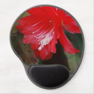 Florecimiento rojo del cactus alfombrilla con gel