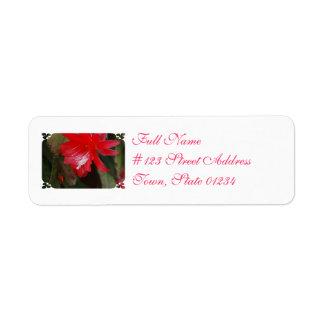 Florecimiento rojo del cactus etiqueta de remitente