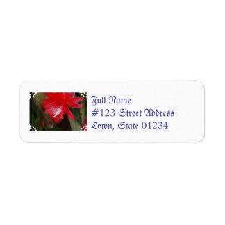Florecimiento rojo del cactus etiqueta de remite
