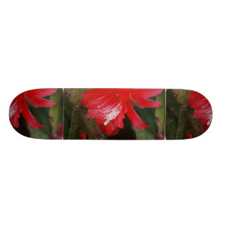 Florecimiento rojo del cactus monopatín personalizado