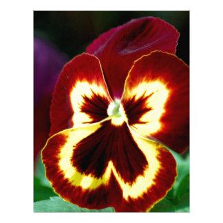 Flores 362