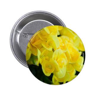 Flores 415 del amarillo