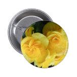 Flores 422 del amarillo