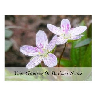 Flores agraciadas de la belleza de primavera postal