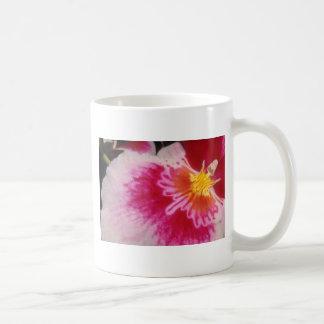Flores agradables del rojo taza básica blanca