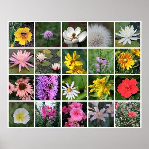 Flores ajustadas poster