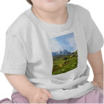 ¡Flores alpinas - hermosas! Camiseta