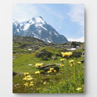 ¡Flores alpinas - hermosas Placa