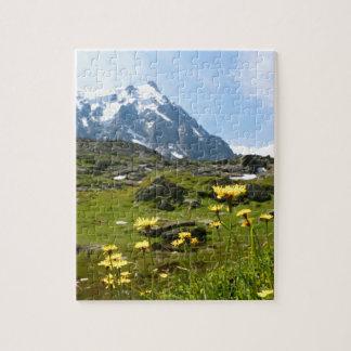 ¡Flores alpinas - hermosas! Puzzle Con Fotos