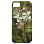 Flores alpinas salvajes iPhone 5 Case-Mate coberturas
