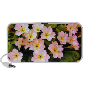 Flores Laptop Altavoz