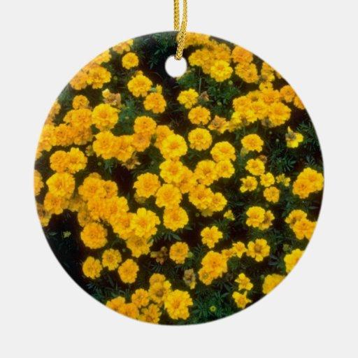 flores amarillas amarillas de las maravillas adorno redondo de cerámica