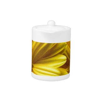 Flores amarillas brillantes (regalo)