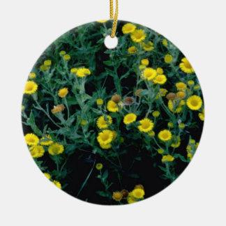 flores amarillas de Fleabane Adorno Redondo De Cerámica