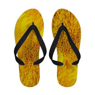 Flores amarillas de la diversión del verano de los